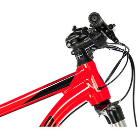 """Cannondale Trail 5 29"""" acid red"""